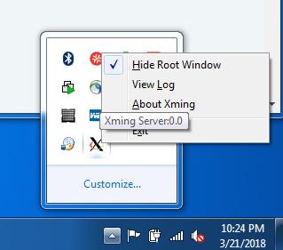 Xming view log